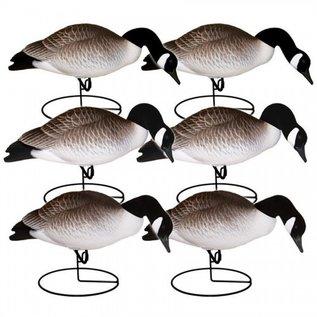 Hardcore Full Body Canada Goose Decoys Feeder 6 pack
