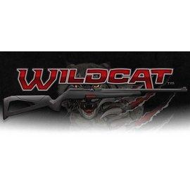 Winchester 22 lr  -  Winchester Wildcat