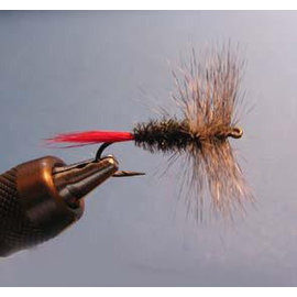 South Bend South Bend Gray Hackle