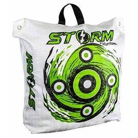 "Storm II 20"" Archery Target Bag"