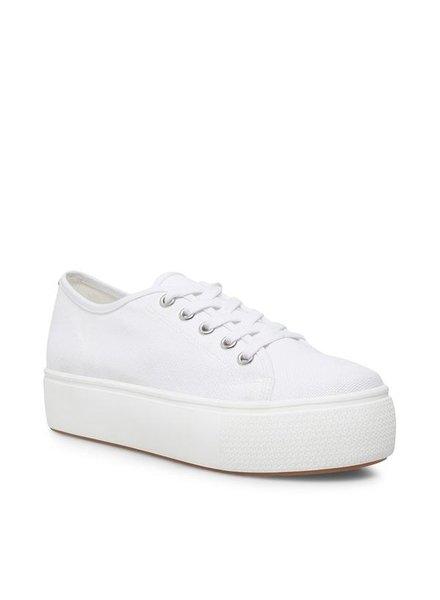 Steve Madden Elore White Sneaker