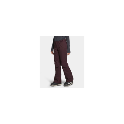 The North Face The North Face Freedom Insulated Pant Women's