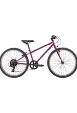 Garneau Garneau Vélo Rapido 242 Violet O/S (2019)