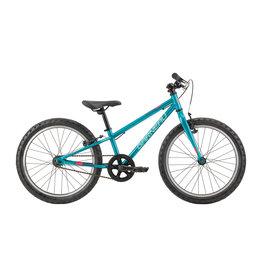 Garneau Garneau Vélo Rapido 203 Sarcelle O/S (2019)