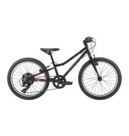 Garneau Garneau Vélo Rapido 202 Noir Mat O/S (2019)