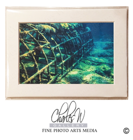 Charles W Frameable Photo Art Cards Bio Reef Lauderdale By the Sea