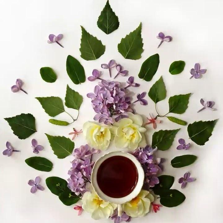 Harney & Sons Tea Fine Teas by Master Tea Blenders