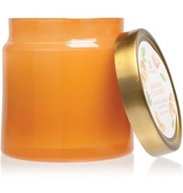 Mandarin Coriander Candles Glass Jar Statement Candle 16 Oz