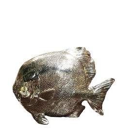 Mark Roberts Stylish Home Decor Silvered Sea Fish 10Hx14L inch