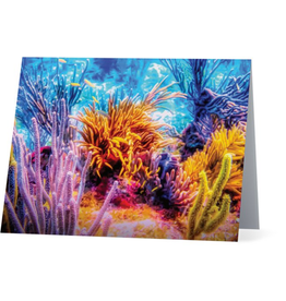 By The Seas-N Greetings Blank Note Card Coral Reef Fiesta