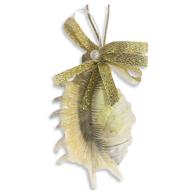 Treasures From The Sea Millepedia Sea Shell Ornament TFTS-33