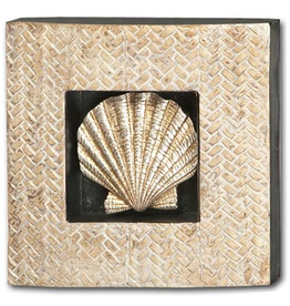 Mercana Clam Shell Recessed In Shodowbox Frame 10x10x2 Wall Art