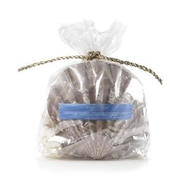 Hillhouse Naturals Sea Shells Potpourri Oceans Edge