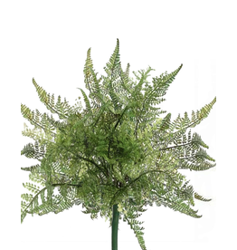 Winward Flowers Floral Green Lace Fern Bush 10 inch Pick