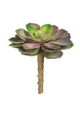 Darice Artificial Succulents Purple Pink w Green Echeveria Rosette 5in