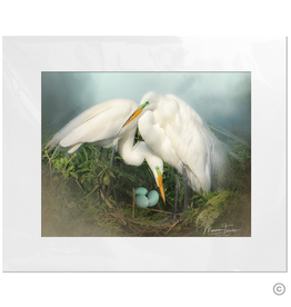 Maureen Terrien Photography Art Print Nesting Egrets 8x10 - 11x14 Matted