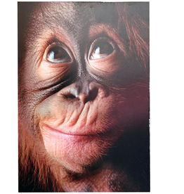 Fathers Day Card Evolved Dad Monkey Face