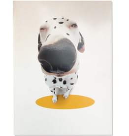 Fathers Day Card About Face - Easy To Spot Dalmation Dog
