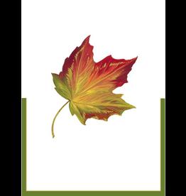 Caspari Place Cards Tent Style 8pk 82930P Fall Maple Leaf
