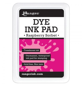 Water-Based Dye Ink Pad for Stamping - Raspberry Sorbet