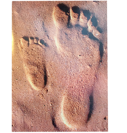 Avanti Fathers Day Card Dad and Son Footsteps in Beach Sand