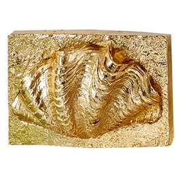 Gold Wall Art Block w Shell Relief Clam