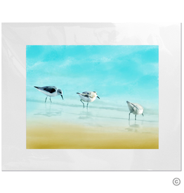Maureen Terrien Photography Art Print 3 Sandpipers II 11x14 - 8x10 Matted