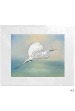 Maureen Terrien Photography Art Print Egret w Twig 11x14 - 8x10 Matted