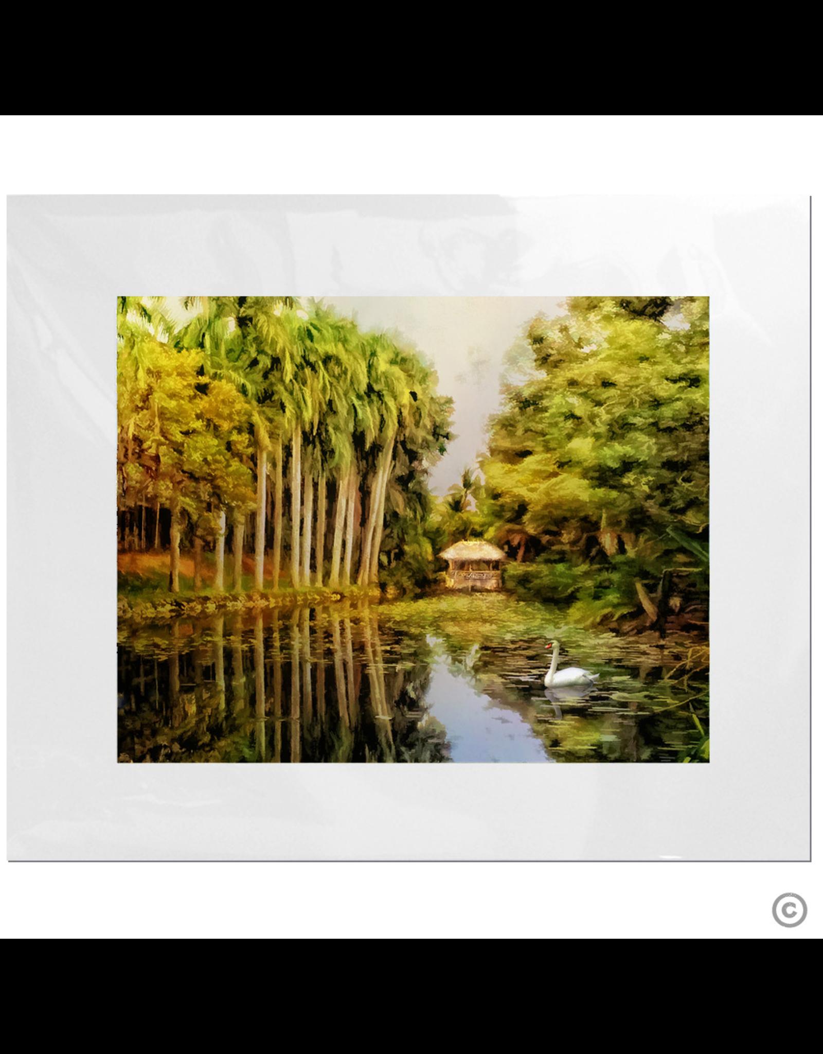 Maureen Terrien Photography Art Print Bonnet House w Swan 11x14 - 8x10 Matted