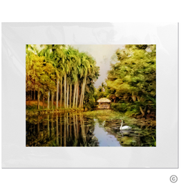 Maureen Terrien Photography Art Print Bonnet House w Swan 11x14 - 8x10 Matted