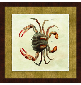 Wendover Art Group Crab II on Burlap w Walnut Burl Frame 28x28