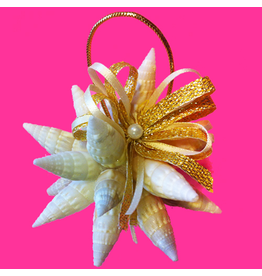 Treasures From The Sea Starburst Shell Ornament TFTS-01