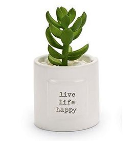 Mud Pie Mini Positive Potted Succulents With Live Life Happy