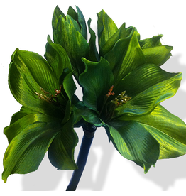 Premier Flowers Floral Silks Triple Amaryllis Green 29 Inch