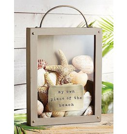Mud Pie Sea Shells Collection Display Box My Own Piece Of The Beach