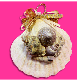 Treasures From The Sea Scallop With Sea Shells Ornament