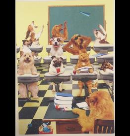 Graduation Card GR4037 Good Kitty by Portal