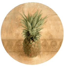 Thirstystone Set of 4 TS221R Pineapple Coasters