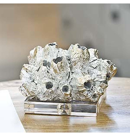 Regina Andrew Design Shiny Silver Barnacle on Crystal Base 8x8x5