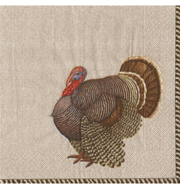 Caspari Fall Thanksgiving Paper Cocktail Napkins 20pk Thomas Turkey