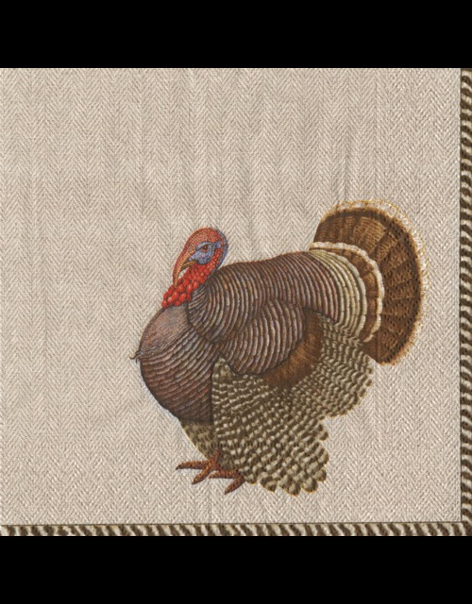 Caspari Fall Thanksgiving Paper Dinner Napkins 20pk Thomas Turkey