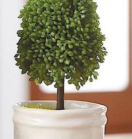 Mud Pie Faux Boxwood Topiary In Mini Pot MOM