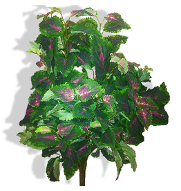 Winward Flowers Floral Coleus Bush Spray 23.5 inch