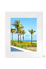 Maureen Terrien Photography Art Print 5 Palms 11x14 - 8x10 Matted