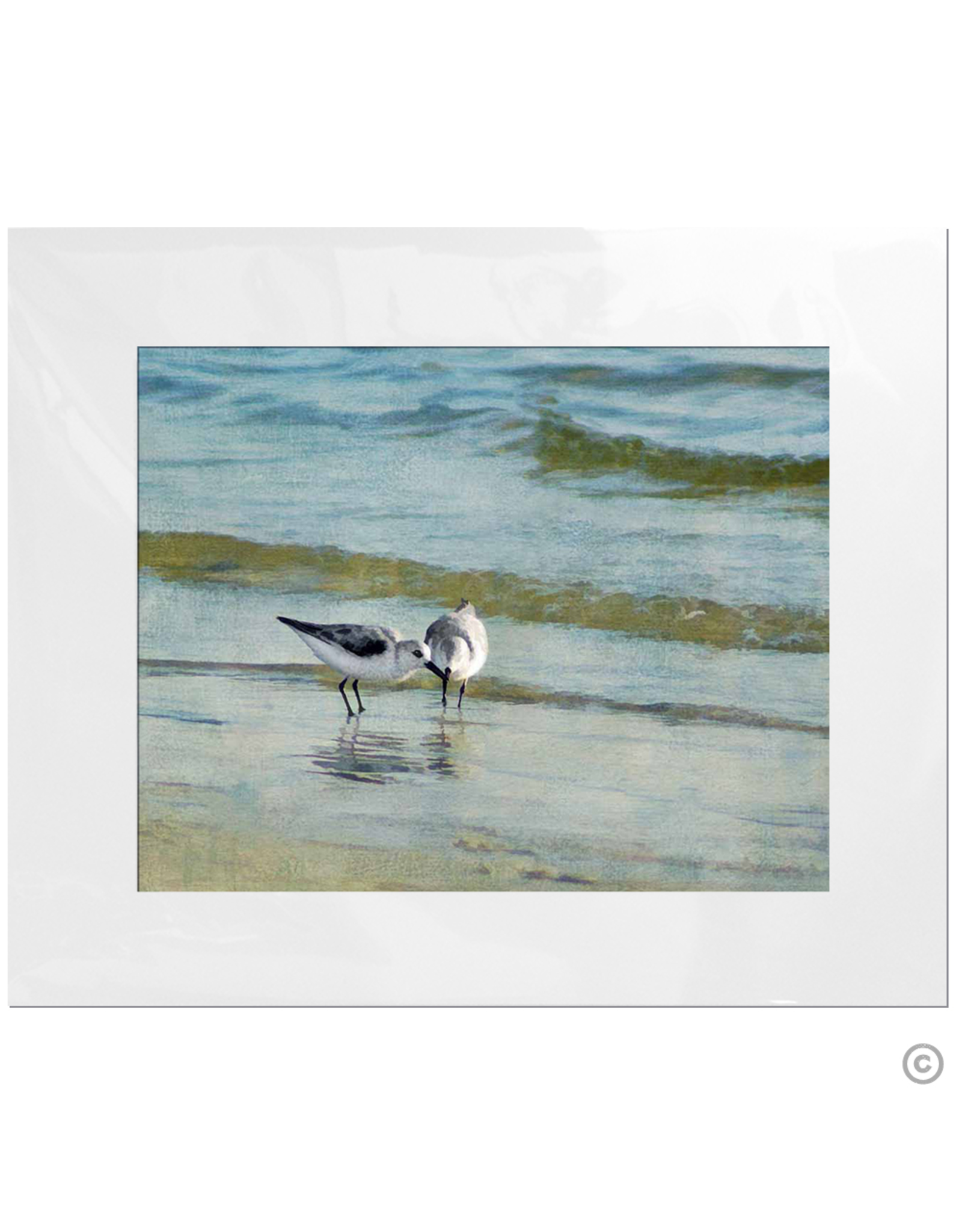 Maureen Terrien Photography Art Print 2 Sandpipers I 11x14 - 8x10 Matted