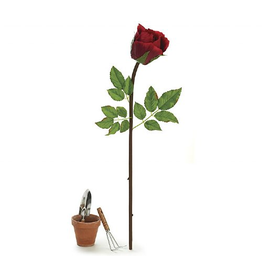 Burton and Burton Large Rose Stem for Display - 43 inch