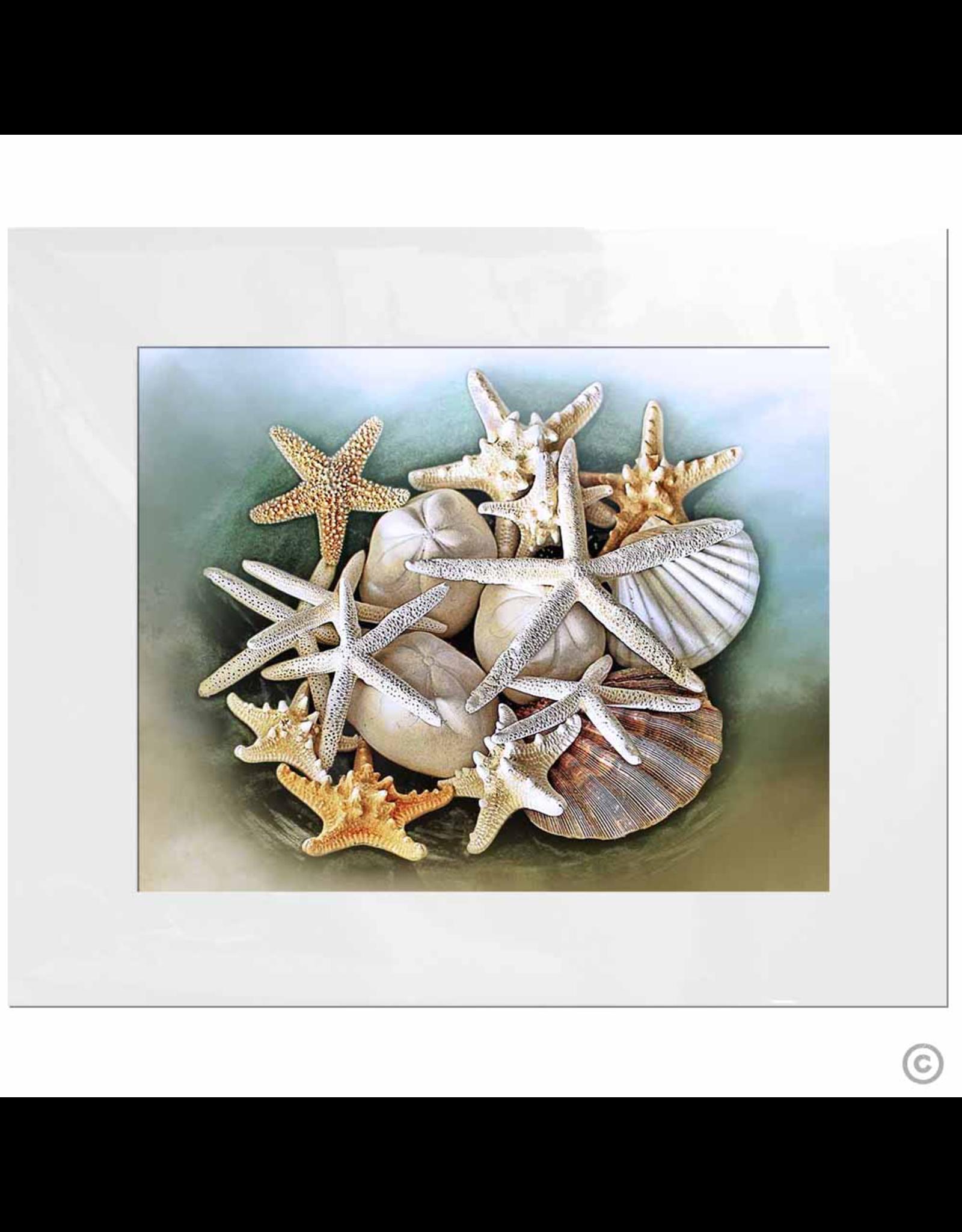 Maureen Terrien Photography Art Print Memories of the beach 11x14 - 8x10 Matted