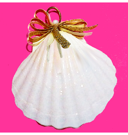 Treasures From The Sea Scallop Sea Shell Ornament TFTS-27