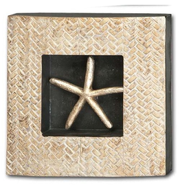 Mercana Starfish In Shodowbox Frame 10x10x2 Wall Art