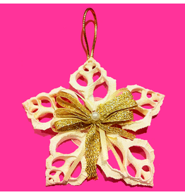 Treasures From The Sea Show Stars Shell Ornament TFTS-B02
